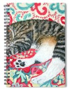 Catnap Time Spiral Notebook