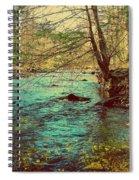 Catoctin Spring Spiral Notebook