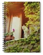Cats Eye View Spiral Notebook