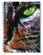 Cats Eyes 11 Spiral Notebook