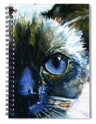 Cats Eyes 13 Spiral Notebook