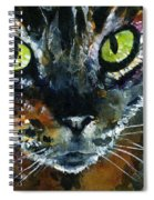 Cats Eyes 16 Spiral Notebook