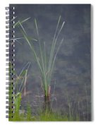 Cattail Spiral Notebook