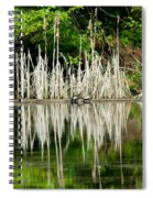 Cattail Reflection Spiral Notebook