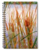 Cattails By The Lake Spiral Notebook