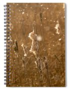 Cattails In Snowstorm 3 Spiral Notebook