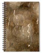 Cattails In Snowstorm 5 Spiral Notebook