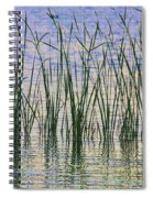 Cattails In The Lake Spiral Notebook