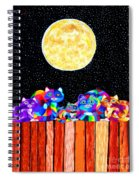 Catting In The Moonlight Spiral Notebook