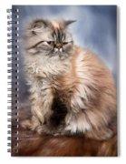 Cattitude 2 Spiral Notebook