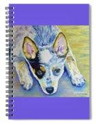 Cattle Dog Puppy Spiral Notebook