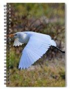 Cattle Egret In Flight Spiral Notebook