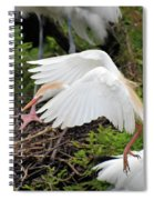 Cattle Egret Spiral Notebook