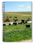 Cattle Graze On Reclaimed Land Spiral Notebook