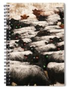 Cattle With Snow On Their Backs Spiral Notebook