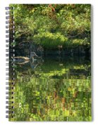 Caught In The Reflection Spiral Notebook