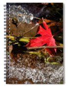 Caught In The Waterfall Spiral Notebook