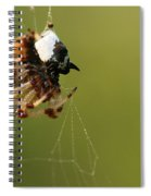 Caught In The Web Spiral Notebook