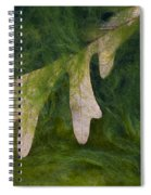 Caught Spiral Notebook
