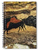Cave Art: Bison Spiral Notebook