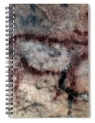 Cave Art: Covalanas Spiral Notebook