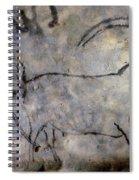Cave Art: Ibex Spiral Notebook