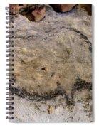 Cave Art: Rhinoceros Spiral Notebook