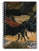 Cave Drawing/lascaux Spiral Notebook