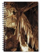 Cave Interior Spiral Notebook