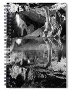 Cave Reflection 2 Spiral Notebook