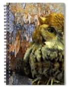 Cavern Watch Spiral Notebook