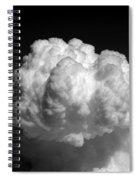 Cb1.981 Spiral Notebook