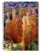 Cedar Breaks 1 Spiral Notebook