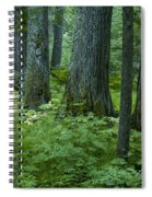 Cedar Grove Spiral Notebook