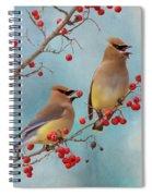 Cedar Waxwing Pair Spiral Notebook