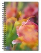 Celebration Of Color Spiral Notebook