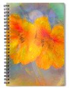 Celebration Of Life. Spiral Notebook