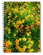 Celebration Of Yellows And Oranges Study 4 Spiral Notebook