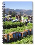 Celery Harvest Spiral Notebook