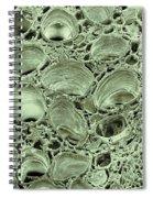 Celery Stalk, Sem Spiral Notebook