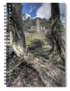 Celestial Roots Spiral Notebook