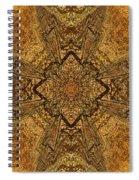 Celtic Mandala Abstract Spiral Notebook