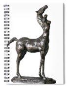 Centaur Spiral Notebook