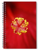 Center Of The Hibiscus Universe Spiral Notebook