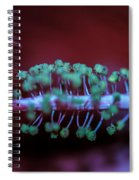 Center Of The Hibiscus World Spiral Notebook
