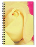 Center Of The Rose Spiral Notebook