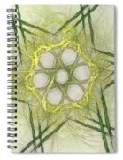 Center Of The Star Spiral Notebook