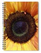 Center Of The Sun Spiral Notebook