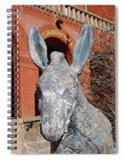 Central City Courthouse Donkey Spiral Notebook