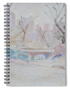 Central Park Record Early March Cold Circa 2007 Spiral Notebook